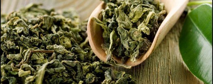 як вибрати зелений чай