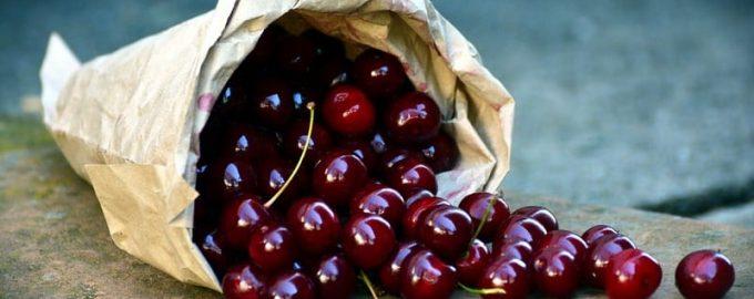 вишня це ягода чи фрукт